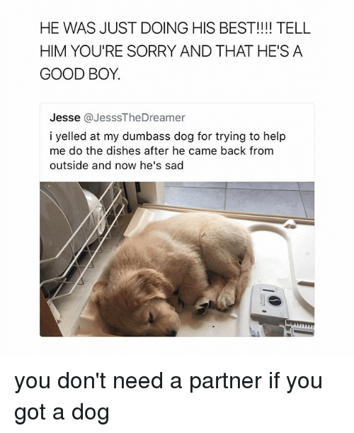Telled: HE WAS JUST DOING HIS BEST!!!! TELL  HIM YOU'RE SORRY AND THAT HE'S A  GOOD BOY.  Jesse @JesssTheDreamer  i yelled at my dumbass dog for trying to help  me do the dishes after he came back from  outside and now he's sad you don't need a partner if you got a dog