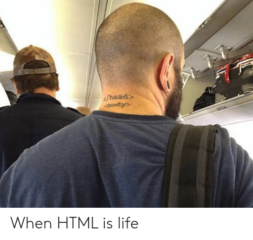 Dank, Head, and Life: /head When HTML is life