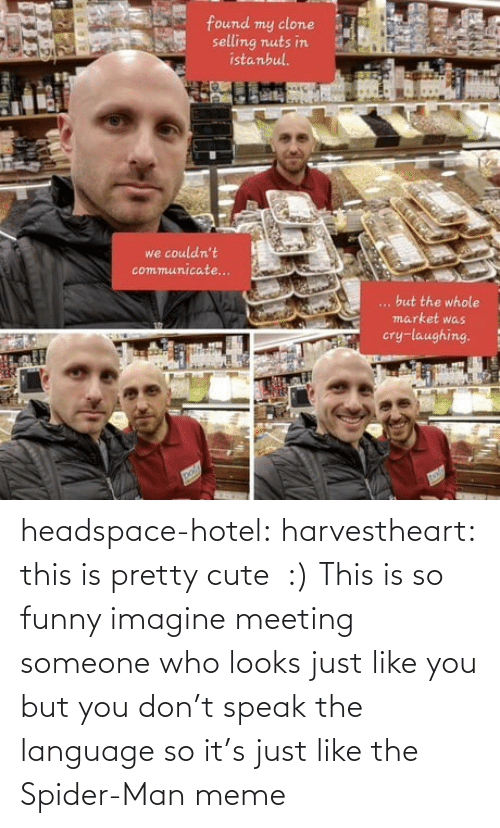 who: headspace-hotel:  harvestheart: this is pretty cute  :)   This is so funny imagine meeting someone who looks just like you but you don't speak the language so it's just like the Spider-Man meme