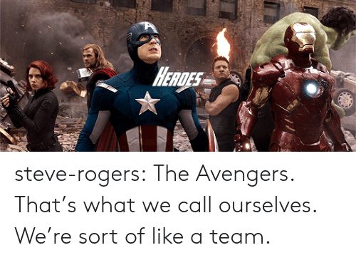 Target, Tumblr, and Avengers: HEAGES steve-rogers: The Avengers. That's what we call ourselves. We're sort of like a team.