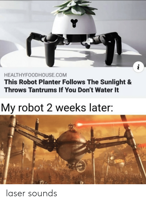 2 Weeks: HEALTHYFOODHOUSE.COM  This Robot Planter Follows The Sunlight &  Throws Tantrums If You Don't Water It  My robot 2 weeks later: laser sounds