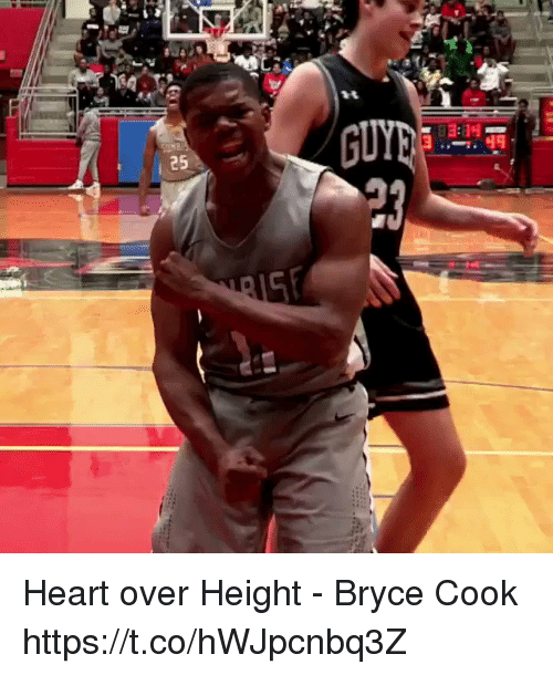 Memes, Heart, and 🤖: Heart over Height - Bryce Cook https://t.co/hWJpcnbq3Z