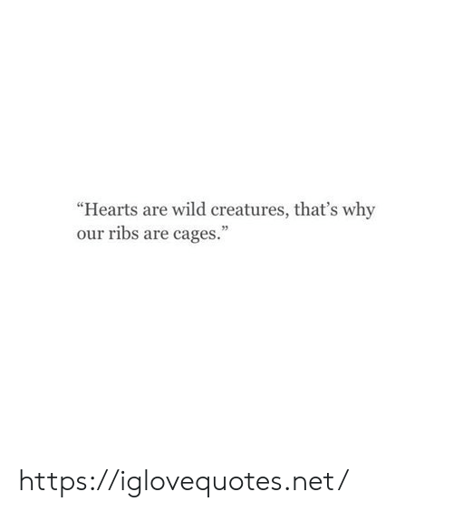 "Hearts: ""Hearts are wild creatures, that's why  our ribs are cages."" https://iglovequotes.net/"