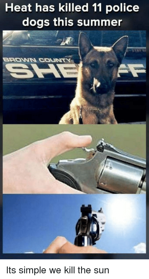 police dogs: Heat has killed 11 police  dogs this summer  BRONN COUNTK   Its simple we kill the sun