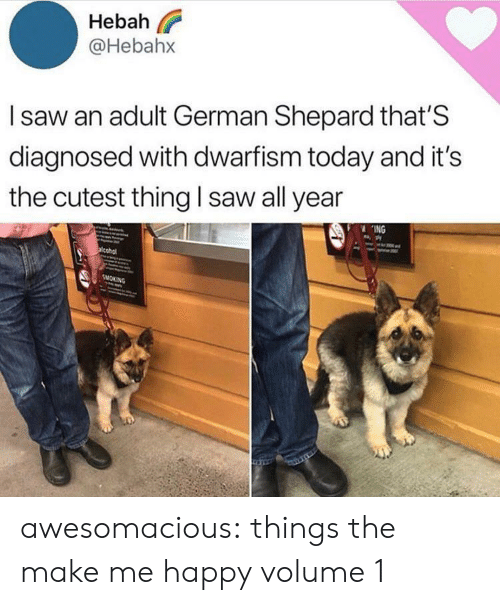 Shepard: Hebah  @Hebahx  Isaw an adult German Shepard that'S  diagnosed with dwarfism today and it's  the cutest thing I saw all year  ING  acohol  SMOKING awesomacious:  things the make me happy volume 1
