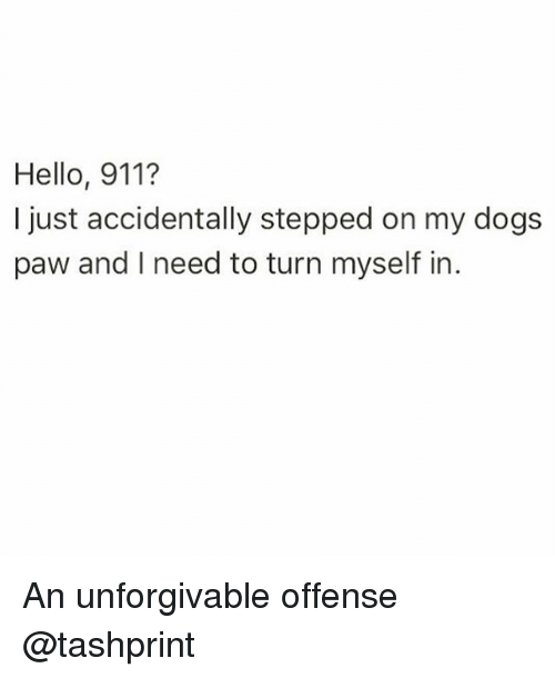 unforgivable: Hello, 911?  just accidentally stepped on my dogs  paw and l need to turn myself in An unforgivable offense @tashprint