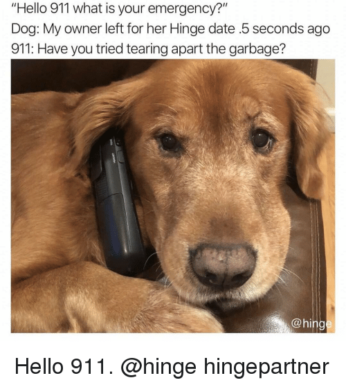 """Have You Tried: """"Hello 911 what is your emergency?""""  Dog: My owner left for her Hinge date .5 seconds ago  911: Have you tried tearing apart the garbage?  @hing Hello 911. @hinge hingepartner"""