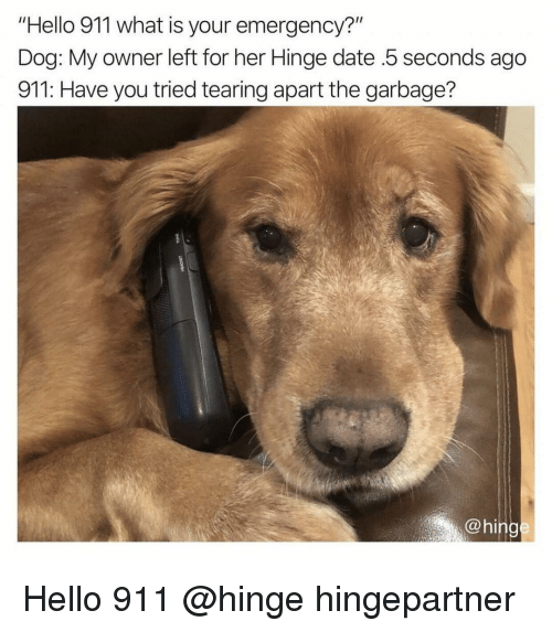"Funny, Hello, and Date: ""Hello 911 what is your emergency?""  Dog: My owner left for her Hinge date .5 seconds ago  911: Have you tried tearing apart the garbage?  @hing Hello 911 @hinge hingepartner"