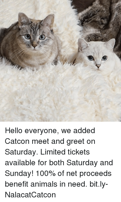 saturday-and-sunday: Hello everyone, we added Catcon meet and greet on Saturday. Limited tickets available for both Saturday and Sunday! 100% of net proceeds benefit animals in need. bit.ly-NalacatCatcon
