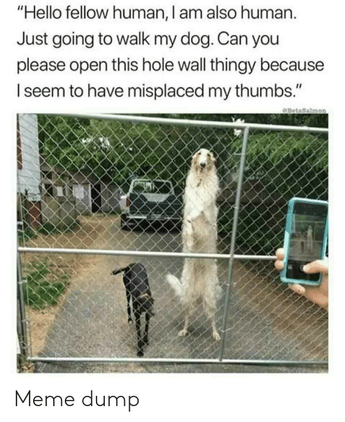 """Hello, Meme, and Dog: """"Hello fellow human, I am also human.  Just going to walk my dog. Can you  please open this hole wall thingy because  seem to have misplaced my thumbs."""" Meme dump"""