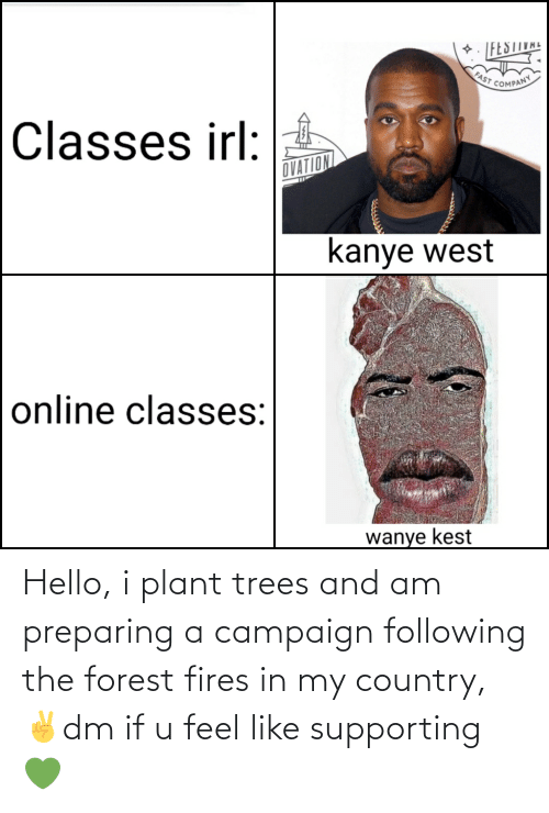 plant: Hello, i plant trees and am preparing a campaign following the forest fires in my country,✌dm if u feel like supporting 💚