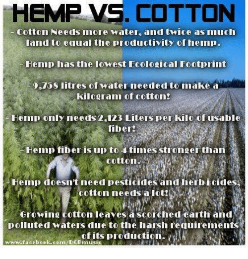 Memes, Earth, and Equalizer: HEMP VS. COTTON  Cotton Needs more water, and twice as much  land to equal the productivity of hemp.  Hemp has the lowest Fcological Footprint  O.TOS litres of water needed toimake a  kilogram of cotton!  Hemp only needs 2,123 Liters per kilo of usable  Hemp fiber is up to 4 times stronger than  Hemp doesn't need pesticides and herbicides,  cotton needs a lot!  Growing on leaves a scorched earth and  polluted waters due to the harsh requirements  of its production  www.facebook.com/DCpmusi