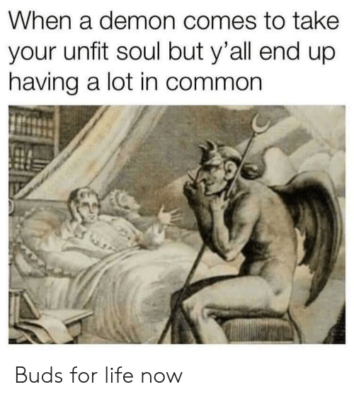 Life, Common, and Demon: hen a demon comes to take  your unfit soul but y'all end up  having a lot in common Buds for life now
