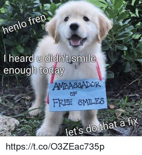 Memes, Free, and Smile: henlo fren  I heard u didn't smile  enough today  OF  FREE SMILES  let's do that a fix https://t.co/O3ZEac735p