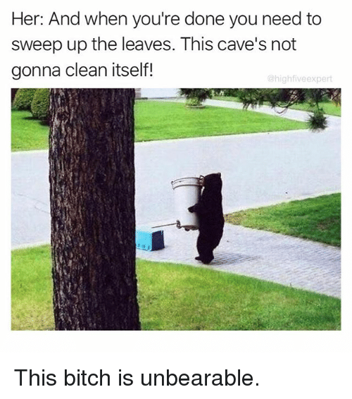 Bitch, Memes, and 🤖: Her: And when you're done you need to  sweep up the leaves. This cave's not  gonna clean itself!  highfiveexpert This bitch is unbearable.