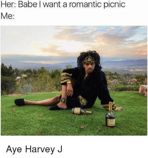 Memes, 🤖, and Her: Her: Babel want a romantic picnic  Me Aye Harvey J