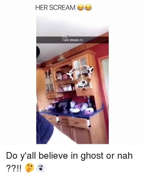 Memes, Scream, and Ghost: HER SCREAM  I am shook rn Do y'all believe in ghost or nah ??!! 🤔👻