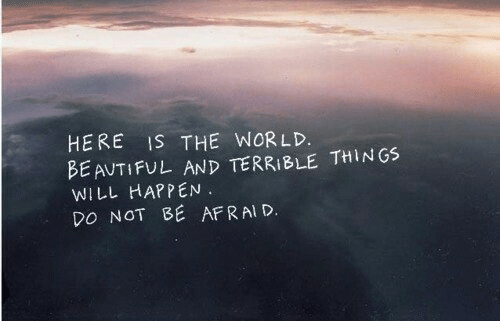 World, Will, and The World: HERE IS THE WORLD.  BE AUTIFUL AND TERRIBLE THINGS  WILL HAPPEN.  DO NOT BE AFRAI D