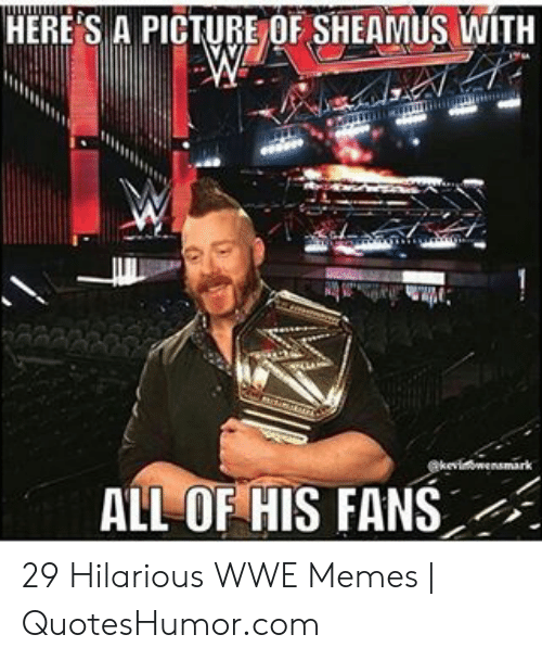 Memes, World Wrestling Entertainment, and Hilarious: HERE S A PICTURE OF SHEAMUS WITH  ALLOF HIS FANS 29 Hilarious WWE Memes | QuotesHumor.com