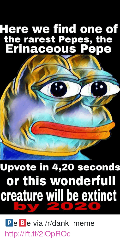 "Pepes: Here  we find one of  the rarest Pepes, th<e  Erinaceous Pepe  Upvote in 4,20 seconds  or this wonderfull  creature will be extinct  by  2020 <p>🅿e🅱e via /r/dank_meme <a href=""http://ift.tt/2iOpROc"">http://ift.tt/2iOpROc</a></p>"