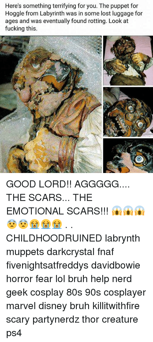 Fnaf: Here's something terrifying for you. The puppet for  Hoggle from Labyrinth was in some lost luggage for  ages and was eventually found rotting. Look at  fucking this GOOD LORD!! AGGGGG.... THE SCARS... THE EMOTIONAL SCARS!!! 😱😱😱😨😨😭😭😭 . . CHILDHOODRUINED labrynth muppets darkcrystal fnaf fivenightsatfreddys davidbowie horror fear lol bruh help nerd geek cosplay 80s 90s cosplayer marvel disney bruh killitwithfire scary partynerdz thor creature ps4