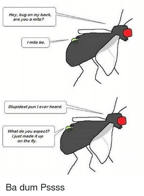 lever: Hey, bug on my back,  are you a mite?  I mite be.  Stupidest pun lever heard.  What do you expect?  l just made it up  on the fy. Ba dum Pssss