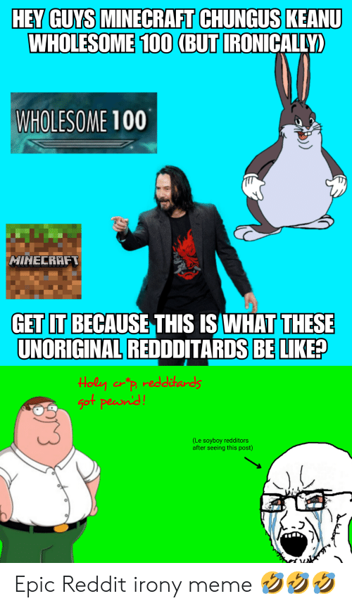 Irony Meme: HEY GUYS MINECRAFT CHUNGUS KEANU  WHOLESOME 100 (BUT IRONICALLY)  WHOLESOME 100  MINECRAFT  GET IT BECAUSE THIS IS WHAT THESE  UNORIGINAL REDDDITARDS BE LIKE?  Holy crp redditards  got peand  (Le soyboy redditors  after seeing this post) Epic Reddit irony meme 🤣🤣🤣