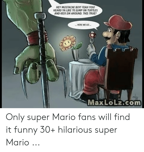 Funny Mario Memes: HEY MUSTACHE BOY! YEAH YOU!  HEARD YA LIKE TO JUMP ON TURTLES  AND KICK EM AROUND. THIS TRUE?  .HERE WE GO  Max LoLz.com Only super Mario fans will find it funny 30+ hilarious super Mario ...