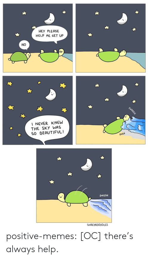 Beautiful, Memes, and Tumblr: HEY PLEASE  HELP ME GET UP  NO  I NEVER KNEW  THE SKY WAS  SO BEAUTIFUL!  PUSH  SWISH  SHREYADOODLES positive-memes:  [OC] there's always help.