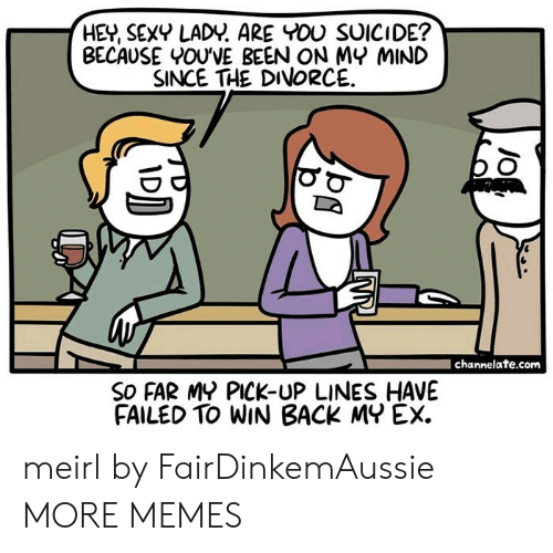 Dank, Memes, and Sexy: HEY, SEXY LADY. ARE YOU SUICIDE?  BECAUSE YOU'VE BEEN ON MY MIND  SINCE THE DIVORCE  channelate.com  SO FAR MY PICK-UP LINES HAVE  FAILED TO WIN BACK MY EX. meirl by FairDinkemAussie MORE MEMES