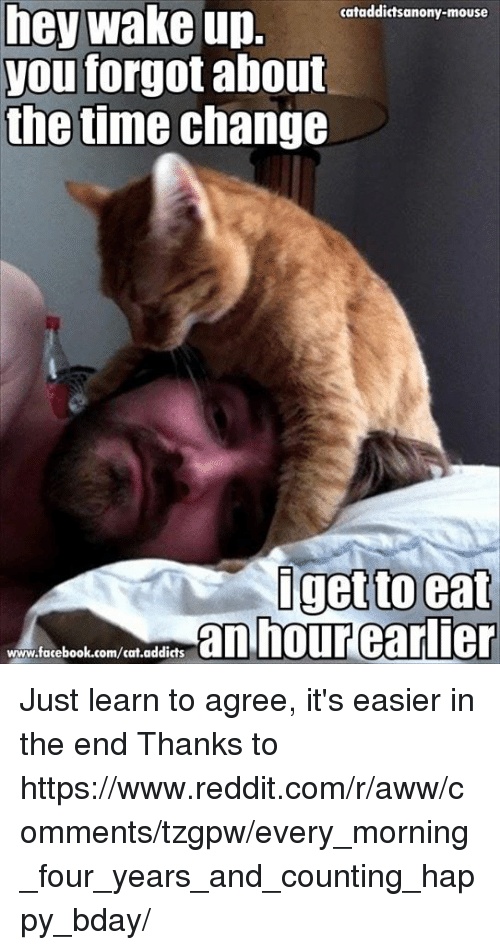 hey wake up: hey wake up.  cataddictsanony-mouse  you forgot about  the time change  I get to eat  an hour earlier  www.facebook.com/cat.addicts Just learn to agree, it's easier in the end  Thanks to https://www.reddit.com/r/aww/comments/tzgpw/every_morning_four_years_and_counting_happy_bday/