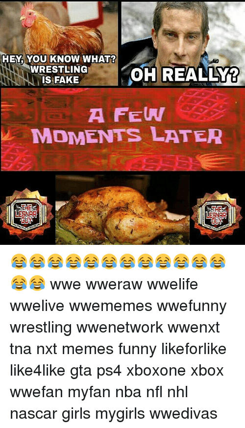 Fake, Funny, and Girls: HEY YOU KNOW WHAT?  WRESTLING  OH REALLY?  IS FAKE  A FEW  MOMENTS LATER  THE  DESNER  DESNAR 😂😂😂😂😂😂😂😂😂😂😂😂😂😂 wwe wweraw wwelife wwelive wwememes wwefunny wrestling wwenetwork wwenxt tna nxt memes funny likeforlike like4like gta ps4 xboxone xbox wwefan myfan nba nfl nhl nascar girls mygirls wwedivas