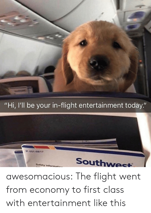 """Tumblr, Blog, and Flight: """"Hi, I'll be your in-flight entertain ment today.""""  IF-551-08/17  Southwest  Safety information awesomacious:  The flight went from economy to first class with entertainment like this"""