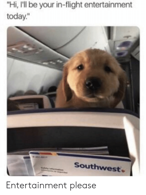 """Flight, Southwest, and Today: """"Hi, I'll be your in-flight entertainment  today.""""  Southwest. Entertainment please"""