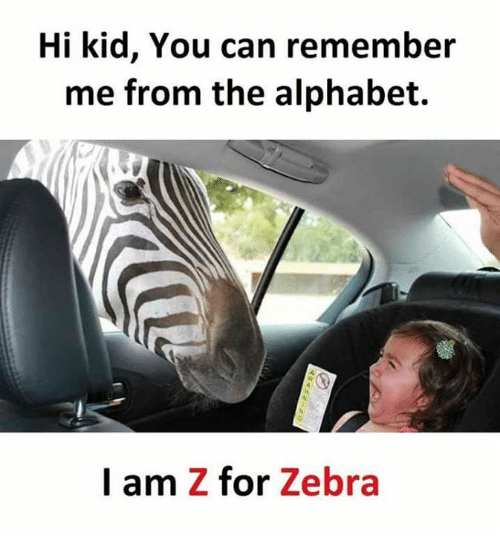alphabets: Hi kid, You can remember  me from the alphabet.  I am Z for Zebra