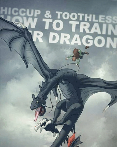 HICCUP & TOOTHLESS TO TRAIN R DRAGON | Meme on ballmemes com