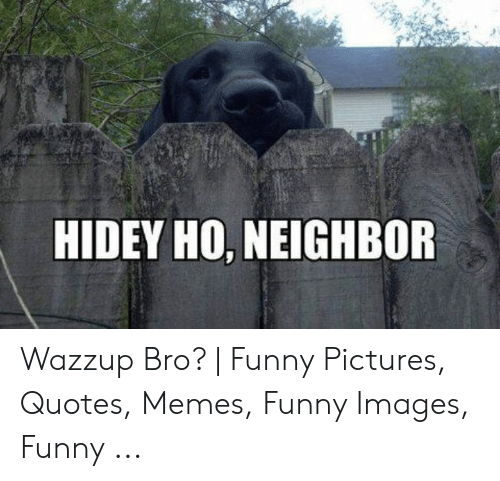 HIDEY HO NEIGHBOR Wazzup Bro? | Funny Pictures Quotes Memes ...