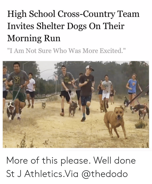 "Dogs, Instagram, and Run: High School Cross-Country Team  Invites Shelter Dogs On Their  Morning Run  ""I Am Not Sure Who Was More Excited."" More of this please. Well done St J Athletics.Via @thedodo"