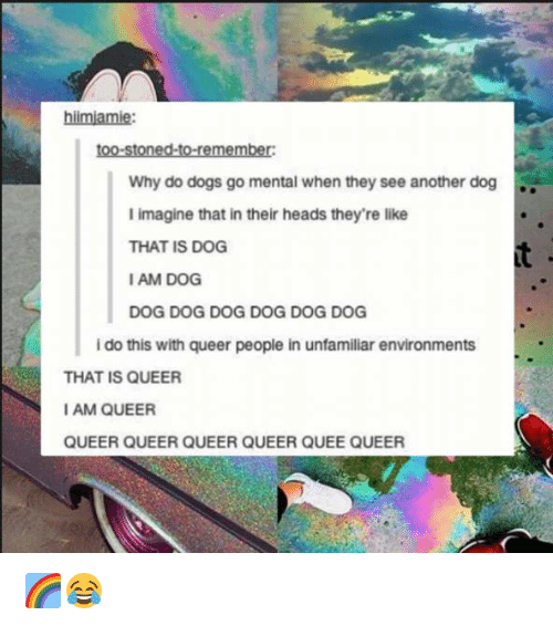 Iamed: hiimiamie:  too-stoned-to-remember:  Why do dogs go mental when they see another dog  I imagine that in their heads they're like  THAT IS DOG  IAM DOG  DOG DOG DOG DOG DOG DOG  i do this with queer people in unfamiliar environments  THAT IS QUEER  I AM QUEER  QUEER QUEER QUEER QUEER QUEE QUEER 🌈😂
