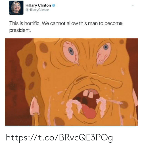 hillary: Hillary Clinton  @HillaryClinton  This is horrific. We cannot allow this man to become  president https://t.co/BRvcQE3POg