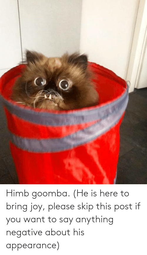 Skip: Himb goomba. (He is here to bring joy, please skip this post if you want to say anything negative about his appearance)