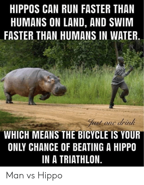 beating: HIPPOS CAN RUN FASTER THAN  HUMANS ON LAND, AND SWIM  FASTER THAN HUMANS IN WATER  Just one drink  WHICH MEANS THE BICYCLE IS YOUR  ONLY CHANCE OF BEATING A HIPPO  IN A TRIATHLON. Man vs Hippo