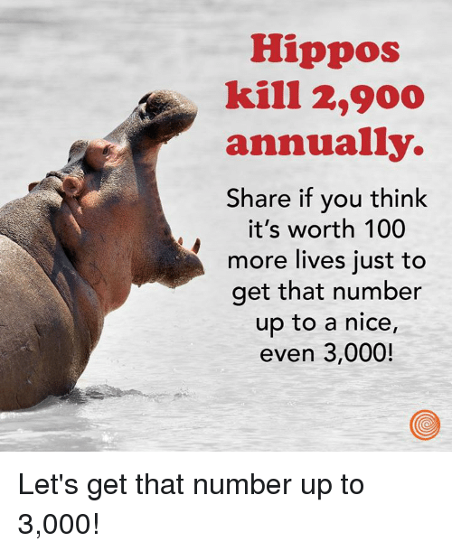 Anaconda, Dank, and Nice: Hippos  kill 2,900  annually.  Share if you think  it's worth 100  more lives just to  get that number  up to a nice  even 3,000! Let's get that number up to 3,000!