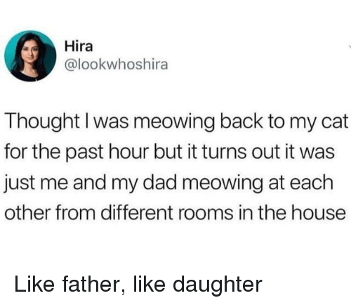 Dad, House, and Thought: Hira  @lookwhoshira  Thought I was meowing back to my cat  for the past hour but it turns out it was  just me and my dad meowing at each  other from different rooms in the house Like father, like daughter