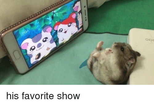 Show, Favorite, and His: his favorite show