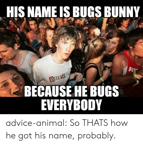 bugs: HIS NAME IS BUGS BUNNY  BILLA  BECAUSE HE BUGS  EVERYBODY advice-animal:  So THATS how he got his name, probably.
