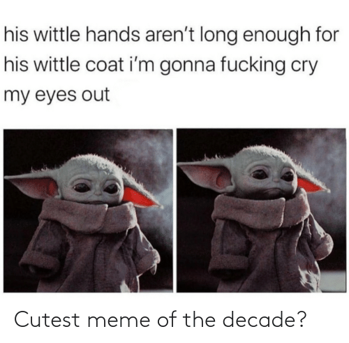 Meme Of: his wittle hands aren't long enough for  his wittle coat i'm gonna fucking cry  my eyes out Cutest meme of the decade?