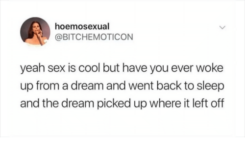 A Dream, Hoe, and Sex: hoe  @BITCHEMOTICON  mosexual  yeah sex is cool but have you ever woke  up from a dream and went back to sleep  and the dream picked up where it left off
