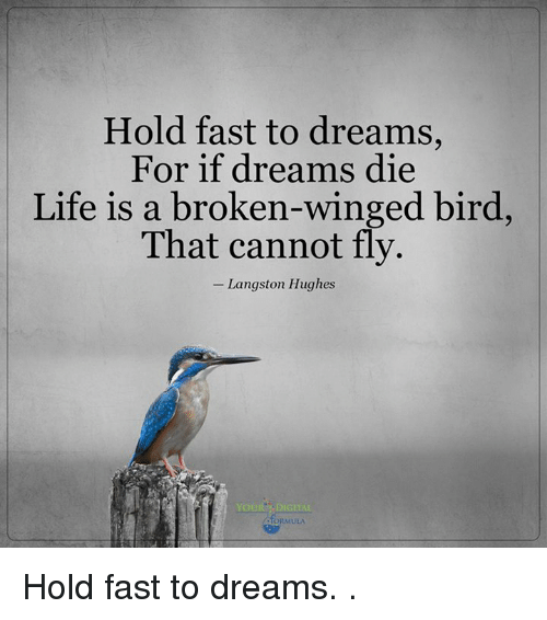 hold fast to dreams langston hughes