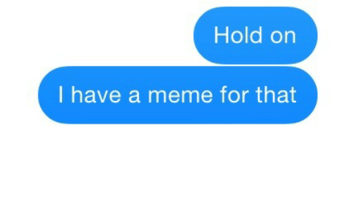 Meme, For, and Hold: Hold on  I have a meme for that